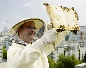 Wir liefern unter anderem Honige von unseren Bienenständen in den Berliner Innenstadtbezirken.